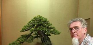 Nicola Crivelli bonsaista