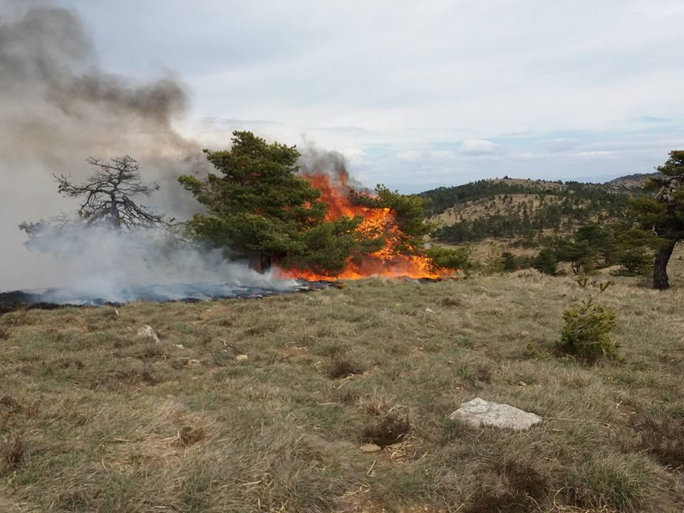 L'incendio nel Parco dell'Appennino Piemontese tra Capanne di Marcarolo e Praglia