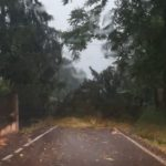 temporale Tortona