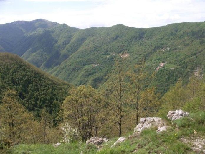 La Valle dei Campassi a Carrega Ligure